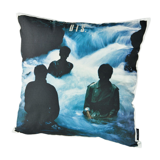 "VINYL ""THE ROOSTERS"" CUSHION DIS."